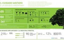 Bosques argentinos, actividad forestal y economías regionales